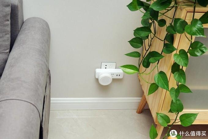 绿植养护经验和园艺装备分享,点缀出你的清爽夏日家居