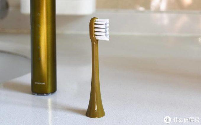 好口腔要天天养护-罗曼电动牙刷T10S