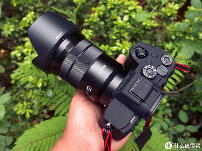 我在用的SONY微单相机镜头