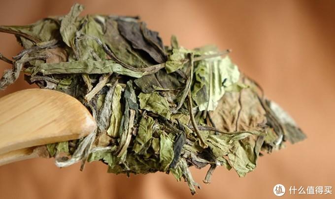 浅谈六大茶类之白茶细说