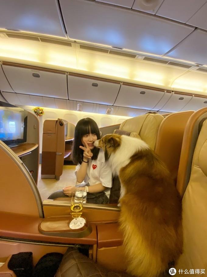 新加坡航空老版头等舱