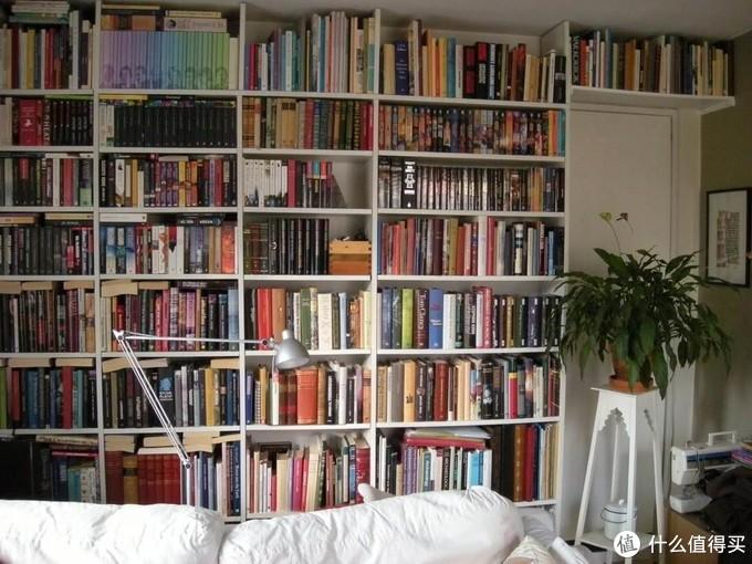 目前国内似乎更接受这种开放式的板材书柜,在装修APP中大家晒的书架大部分都是这种样式的。
