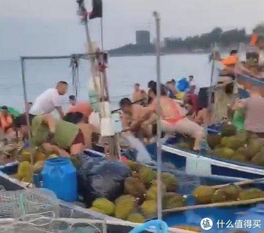 村民哄抢榴莲导致食物中毒