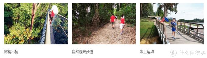 这里应该是新加坡徒步爱好者的天堂