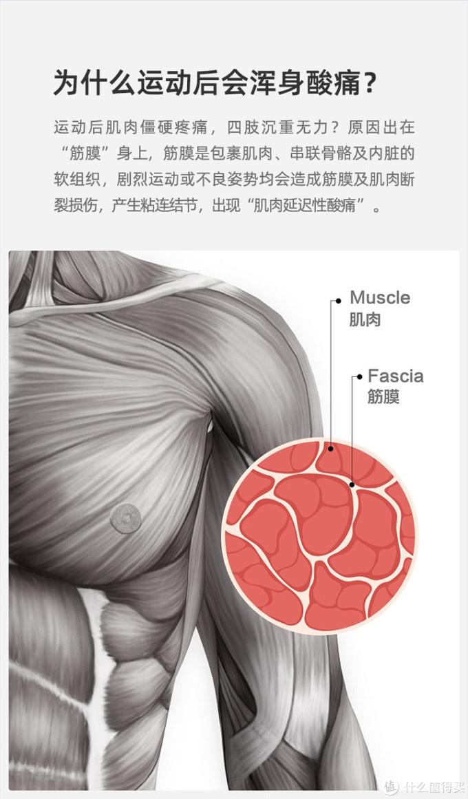 缓解肌肉酸痛,云麦筋膜枪Pro Basic让你爱上运动