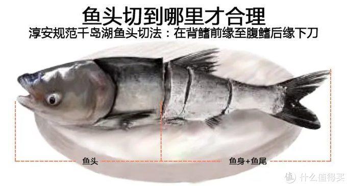 想吃千岛湖鱼头的人,好多都吃了亏(3000字防坑攻略)