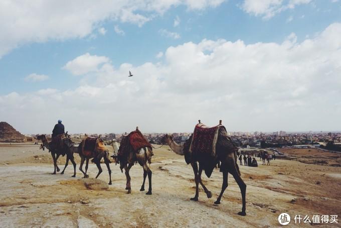 背景是灰扑扑的开罗城