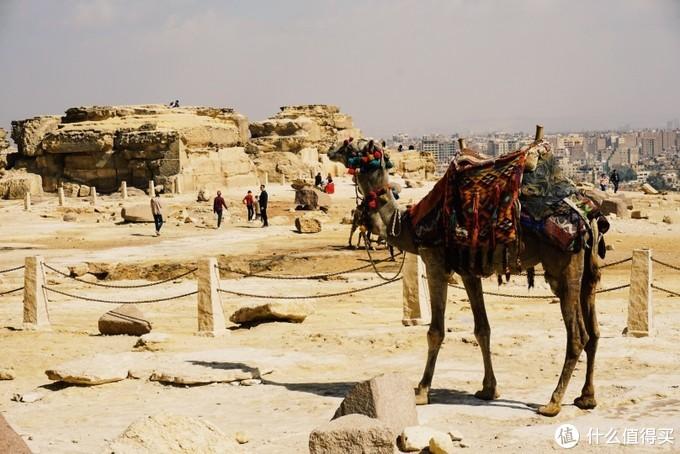 初踏非洲-埃及旅游新手攻略第1弹