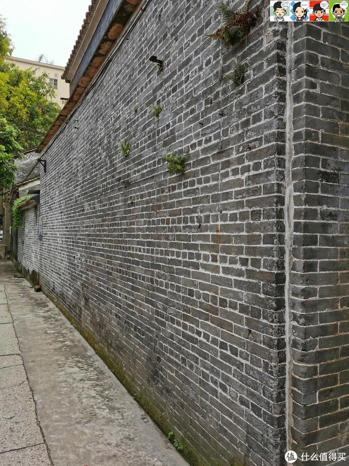 大户人家的防盗墙,好几米高,等闲小贼是没本事上去的~