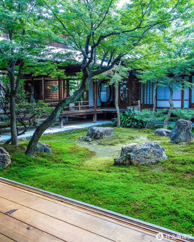 4点打造网红日式庭院,5㎡小院也能做