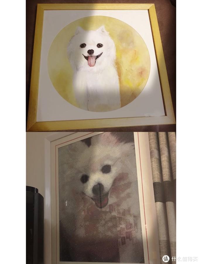 朋友送的 我家毛孩子的手工画