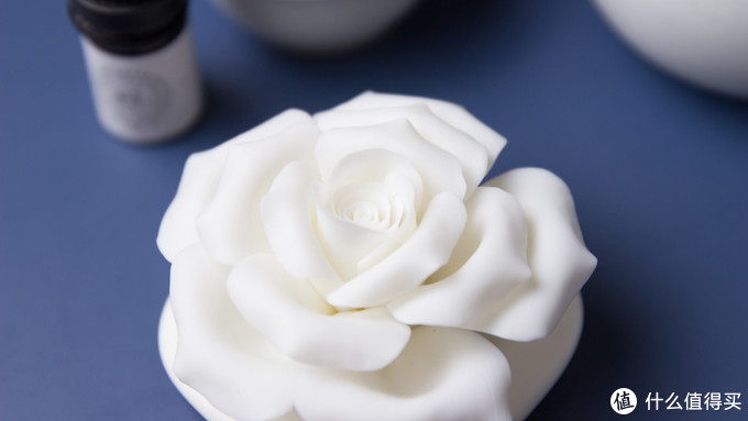 送给女友的第一朵玫瑰,可以保存一辈子