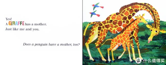 绘本Does a kangaroo have a mother,too