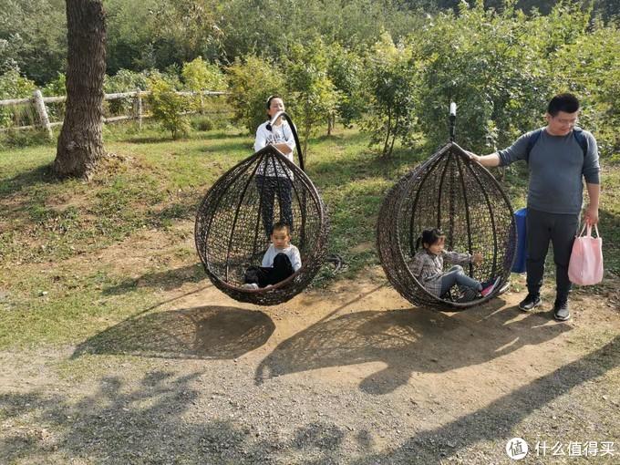 秋高气爽,享受亲子时光——低价游铭湖+萌宠互动