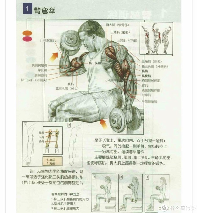 居家锻炼之器械装备选择:只要装备选得好,足不出户也能保持好身材~