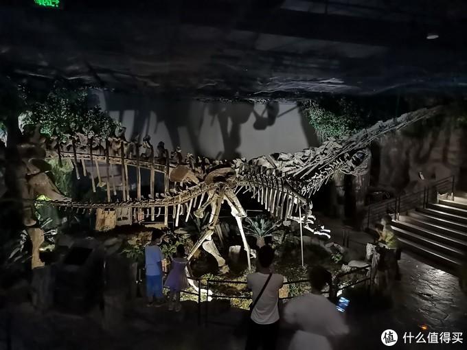 恐龙骨架化石,估计大家都知道,这个化石基本都是石膏做的,但是不影响小朋友对它的喜欢