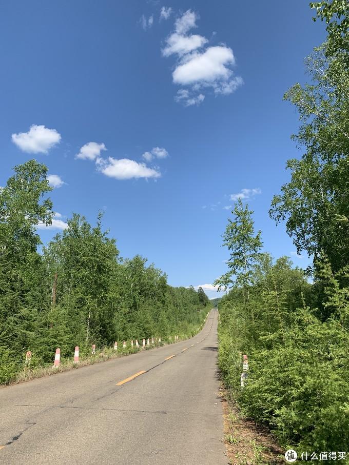下午离开莫尔道嘎一路穿越大兴安岭森林