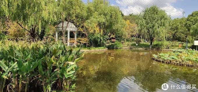 吴泾公园/闵行地区浦东江边的园林景观亭台楼阁婀娜多姿,类似苏州私家园林