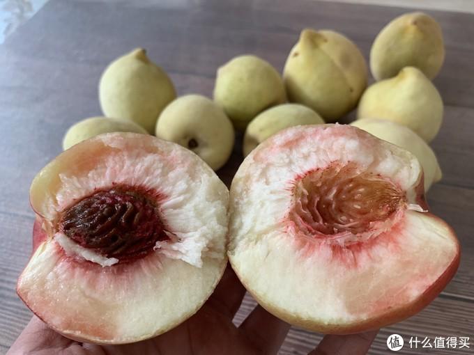 喜欢吃桃子吗?快来看看!