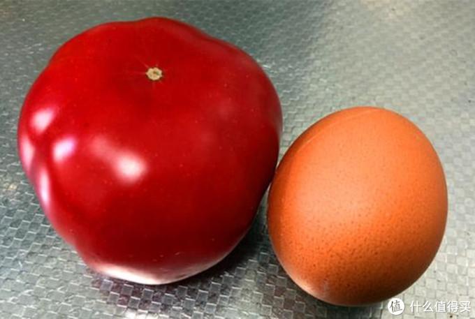 都说会做西红柿炒蛋,这个顺序容易搞错,不然西红柿不鲜,鸡蛋不嫩