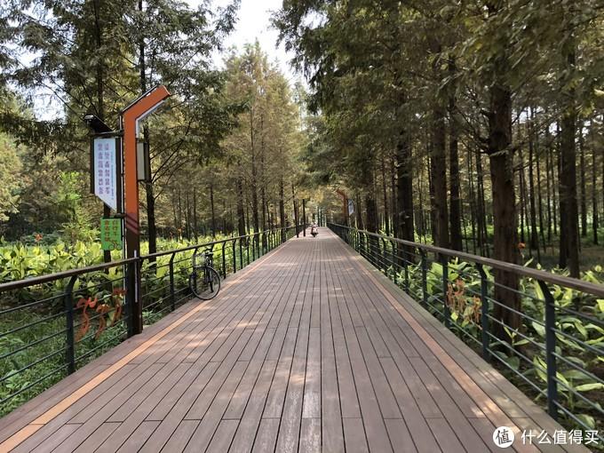 青山湖绿道1