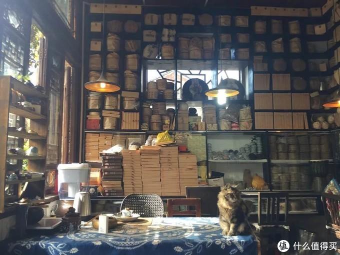 和尚的茶室和猫