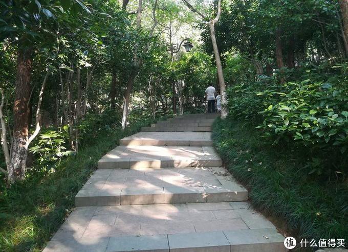 国家级森林公园---半山公园!利用周末好好放松一下!