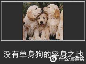 """""""秋天的第一杯奶茶""""谁送你的?上海联通送我一杯,为嘛不要"""