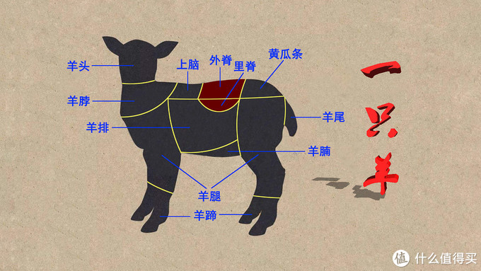 又到一年吃羊时——双11前要不要先做做关于羊肉的功课?
