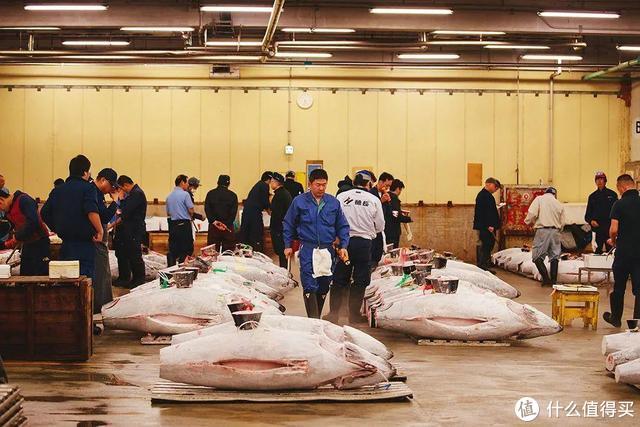 全球最大海鲜市场被拆,六旬老人失声痛哭:请把它还给我!