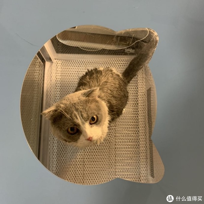 养宠烘干机大分享:百我宠物烘干箱