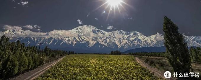 卡氏家族酒庄:阿根廷葡萄酒崛起的引领者