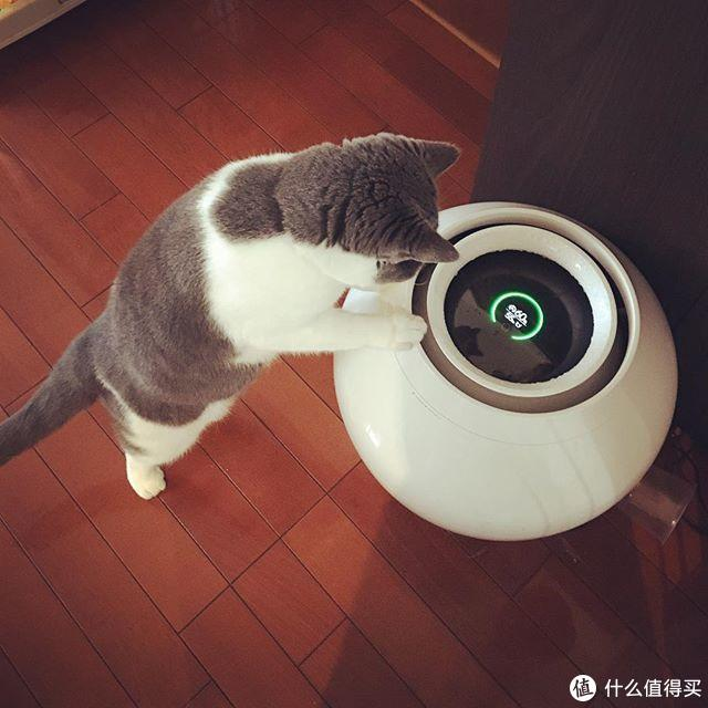 """日本「乔布斯」""""抄袭""""中国宫廷风?高科技30分钟让空气变潮湿"""