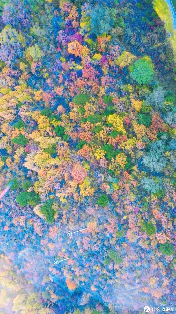 北京秋季赏红叶 小众秘境百瑞谷,假装在京都