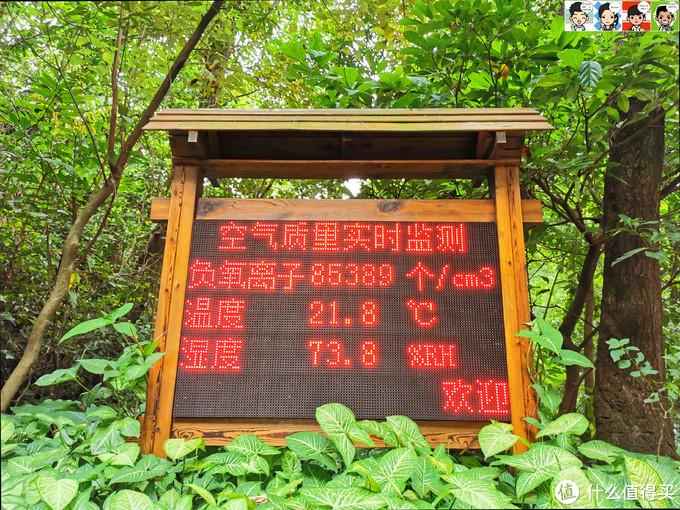 作为我国第一个自然保护区,从海拔14米到1000米,一万七千亩的面积内生长着约占广东植物种数四分之一的高等植物,包括属于本气候区的地带性顶极植被——季风常绿阔叶林以及向它演变的各种各样、丰富多彩的过渡植被类型。空气质量无需多言,看这块显示屏就知道了。