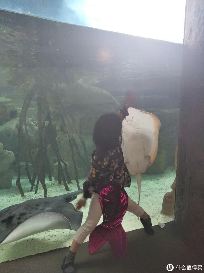 女儿和鳐鱼玩的开心