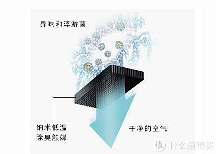 HCC钛金杀菌净味 海信439升智能冰箱使用体验