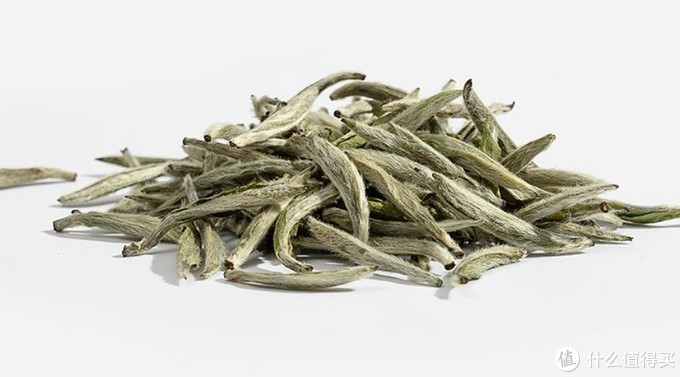 你对白茶了解吗?看完这篇让你进一步了解白茶