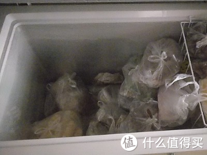 容声BD/BC-309MD冷柜冰柜测评:强大空间,家商两用,品味鲜活,把想装的都装下