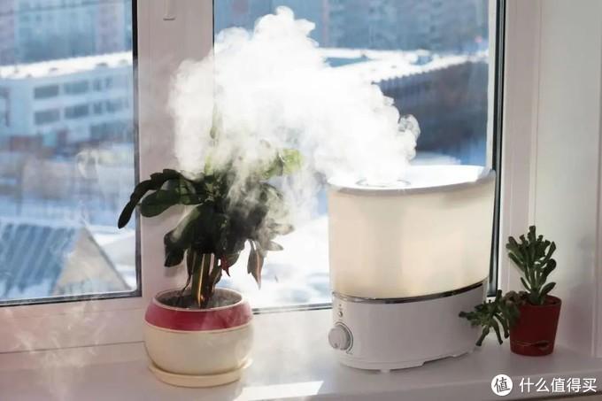 解救冬季干燥,为什么要选择无雾加湿器?