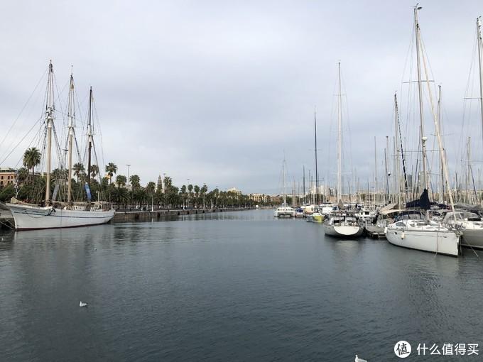 停靠岸边的游艇特别多,好像附近有个游艇学校