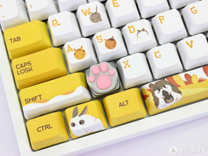 张大妈让我成为桌面吸猫玩家,ZOMO x Bilibili 萌盒开箱