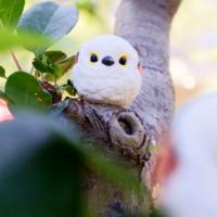 激萌可爱的动物世界潮玩助力WePlay文化展!