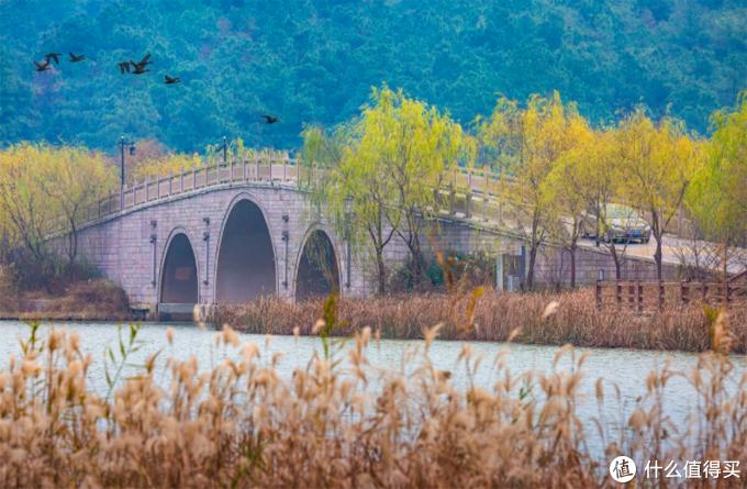 江南的秋天,藏在这座高铁25分钟的太湖边小城