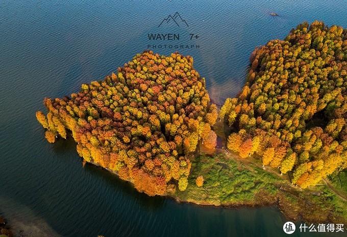 浙江最美的秋色,在这条盘山公路上