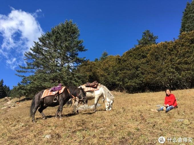 可可爱爱的小妹和她妈妈一起块牵着马估计刚送人上山