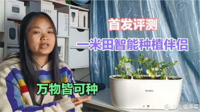 首发评测:一米田智能种植伴侣,APP远程浇水,从此吃上健康蔬菜