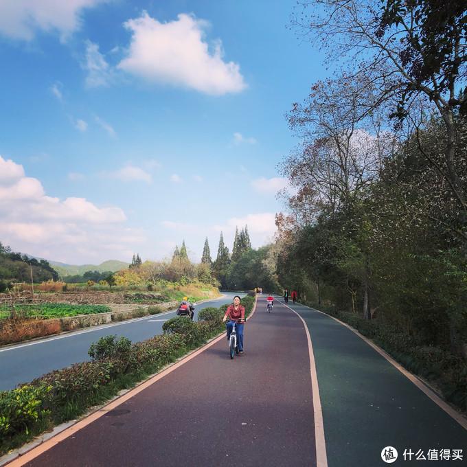 景区内绿道