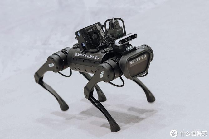 OPPO机械狗体验:感知技术改变未来生活
