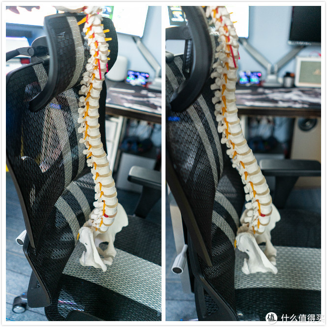 你是否需要一把人体工学椅?脊柱外科大夫告诉你